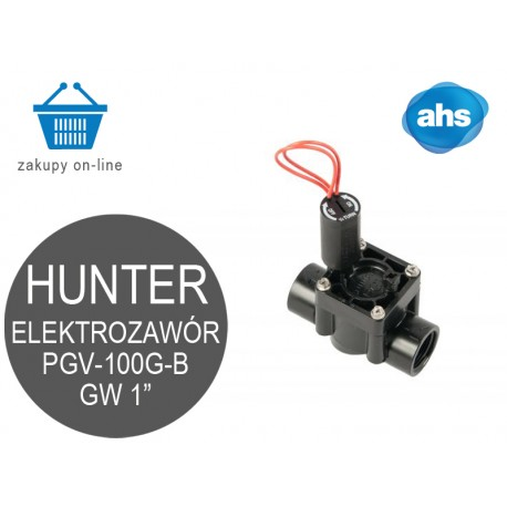 "Elektrozawór PGV-100-GB HUNTER 1"""